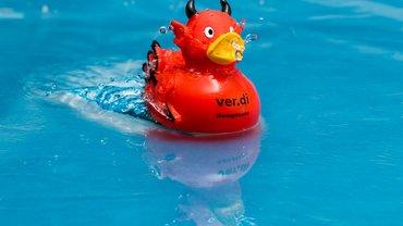 ver.di Kampfente schwimmt